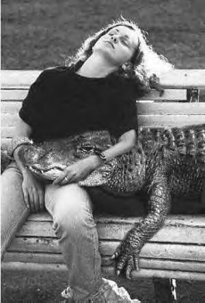 gators2