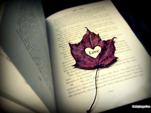 love on a page