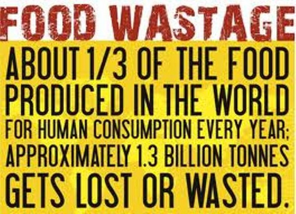 wasted food global factoid