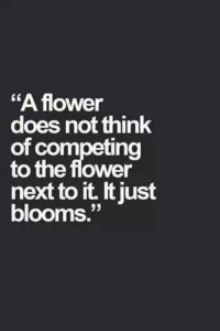 compete flower bloom
