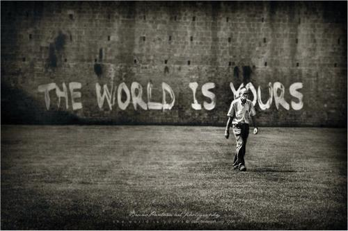 fire the world is yours