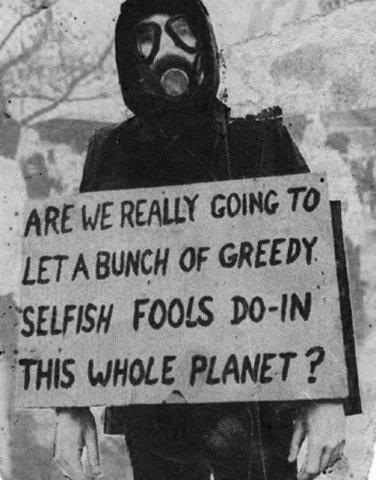 greedy selfish fools