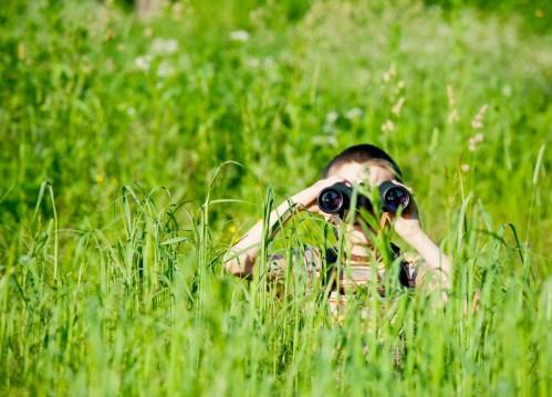 explorer life foreign