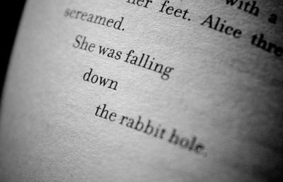falling down the rabbit hole