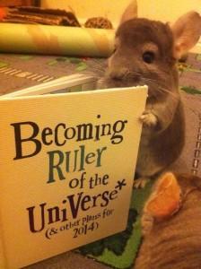 big plans ruler universe