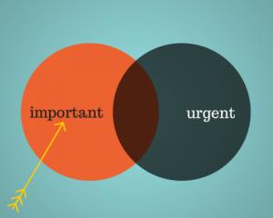 important urgent