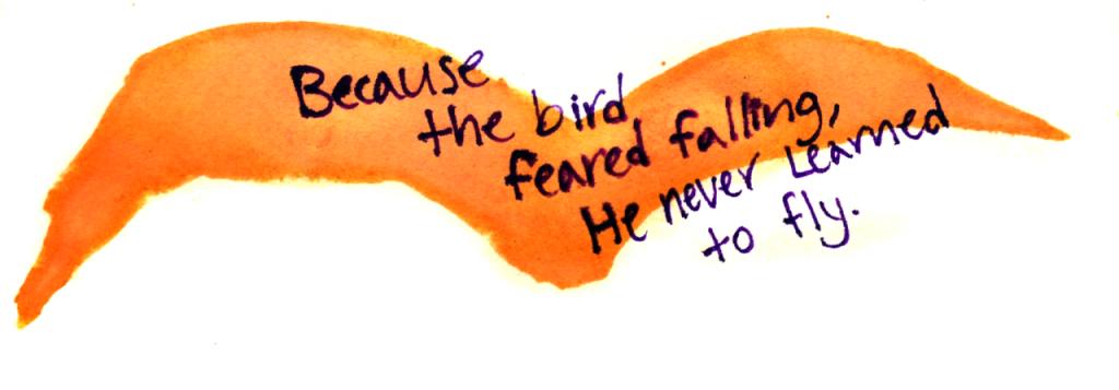 fear bird fly fall never do life
